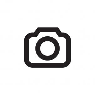 logo303